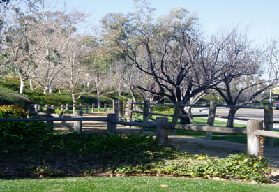Cowan Hills Equestrian Trail along Newport Boulevard